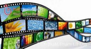 Thủ tục xin cấp giấy phép phổ biến phim