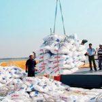Tư vấn quy định mới nhất về thủ tục xin cấp Giấy phép nhập khẩu phân bón
