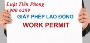 Thủ tục cấp Giấy phép lao động đối với vị trí giám đốc điều hành của người lao động nước ngoài