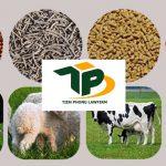 Thủ tục xin Giấy phép nhập khẩu thức ăn chăn nuôi