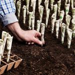 Căn cứ tính tiền sử dụng đất?