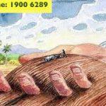 Tư vấn thủ tục chuyển đổi mục đích sử dụng đất