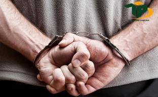 Tội phạm là gì và phân loại các loại tội phạm