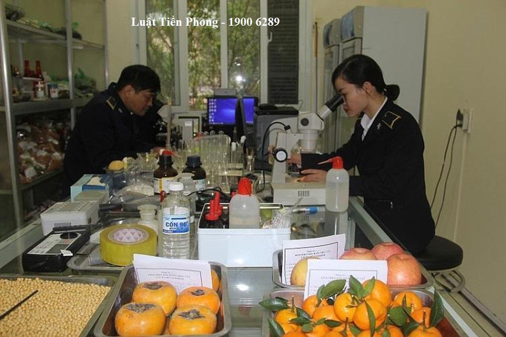 quy định của pháp luật về thủ tục kiểm dịch thực vật nhập khẩu