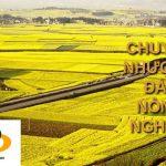 Có được nhận chuyển quyền đất nông nghiệp ở khác xã không?