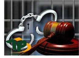 Những biện pháp giám sát, giáo dục trong Luật Hình sự