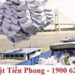 Trường hợp xuất khẩu gạo không phải xin giấy phép