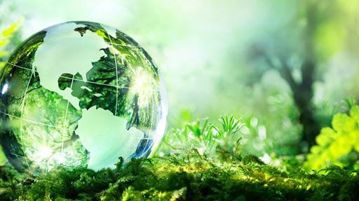 Thủ tục thành lập viện nghiên cứu về môi trường